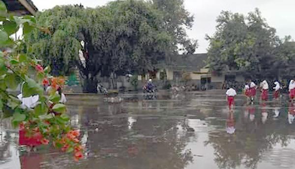 Drainase Depan Sekolah Buruk, SDN 01 Kencong Langganan Banjir