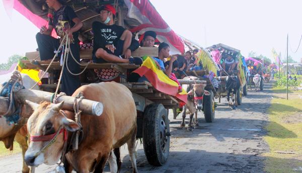 Lestarikan Armada Angkutan Tradisional, Warga Jember Selatan Adakan Festival Pegon Hias