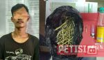 Reskrim Polres Kuansing Ciduk  Tersangka Shabu dan Ganja