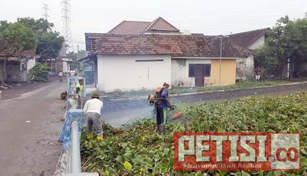 Takut Banjir Kembali Menerjang,Warga Bersihkan Enceng Gondok