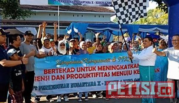 Family Gathering PTP Nusantara X Kebun Ajong Gayasan