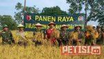 Forpimka Pakal Bersama TNI dan Petani Panen Raya di Pakal